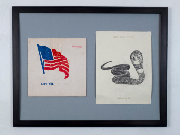 United Snakes of America Collaboration with Artcodex