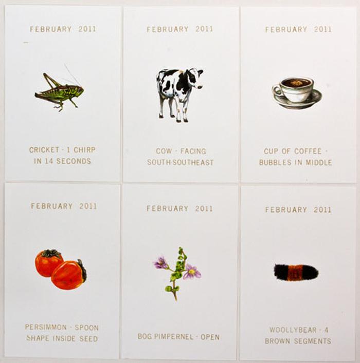 Weatherlore Cards